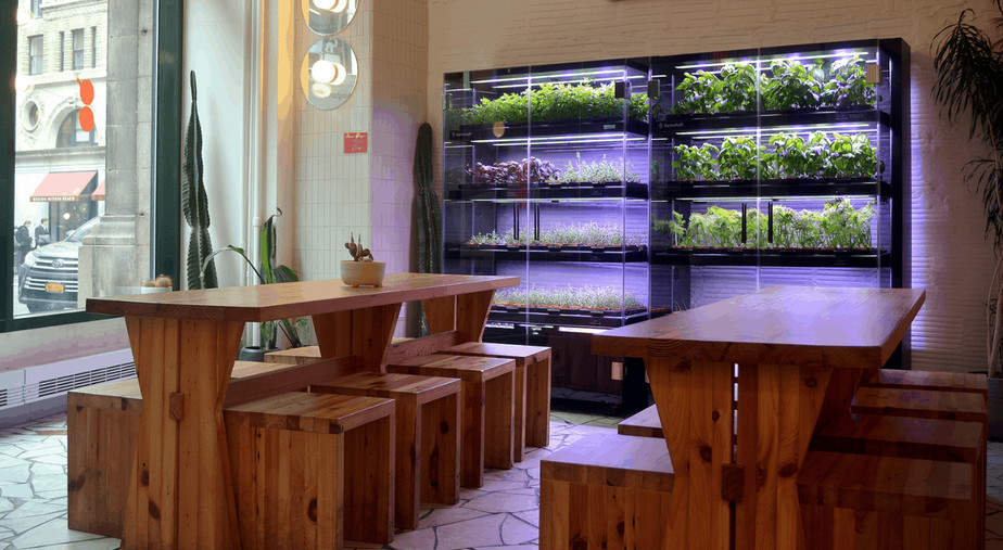 Farm Shelf indoor system for gardening