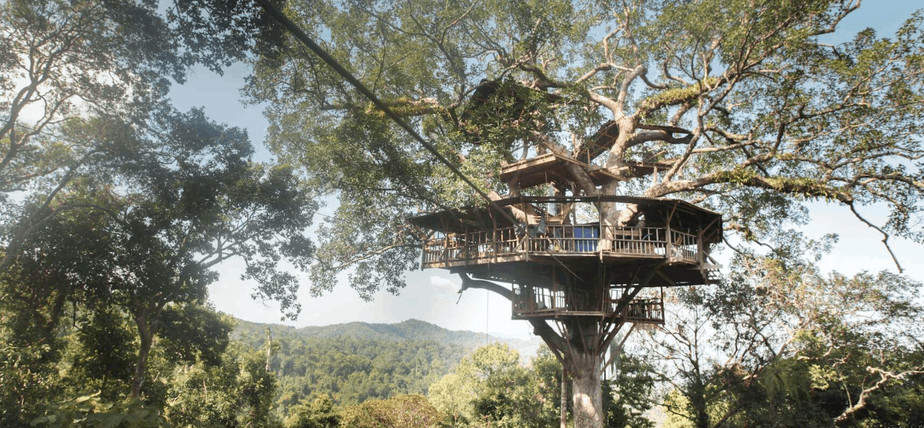 Tree house splurge vacation in Laos