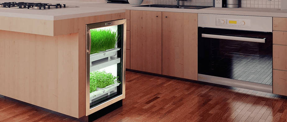 Urban Cultivator garden in kitchen