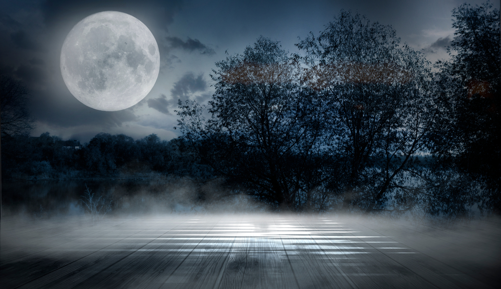 misty-moon-by-trees