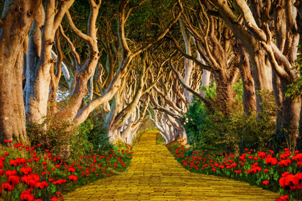 Yellow brick road, path to inspiration
