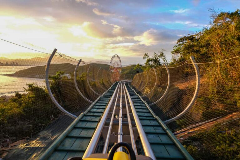 Mountain coaster excursions