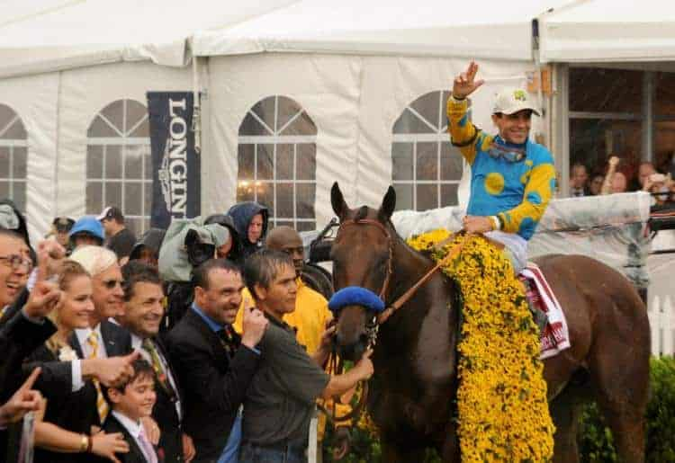 winning horse is draped in a delicate blanket made from Black-Eyed Susans